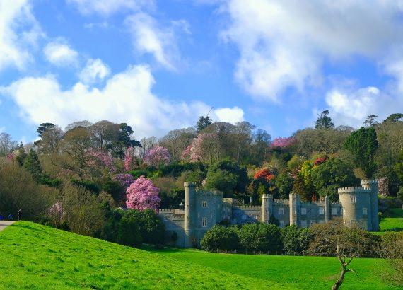 Caerhays Castle & Spring Gardens - Beautiful Heirloom Home