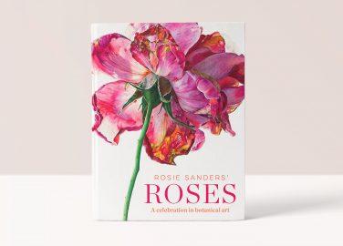 Rosie Sanders' - Roses - Beautiful Heirloom Home