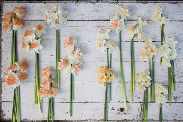 Sherbet-Centerpiece-6 - A Year in Flowers - Beautiful Heirloom Home