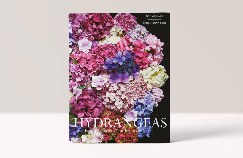 HYDRANGEAS – Naomi Slade, Georgianna Lane